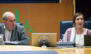 EGKren agerraldia Eusko Legebiltzarreko Enplegu, Gizarte Politikak eta Gazteria Batzordean