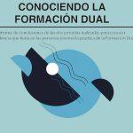 Publicamos el informe Conociendo la Formación Dual - Consejo de la Juventud de Euskadi (EGK)